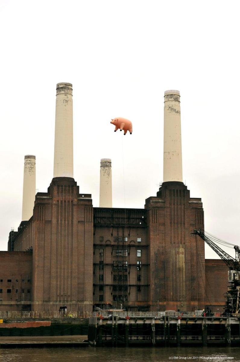 Pink Floyd [Animals] pig