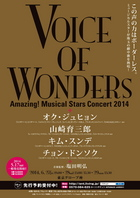 「VOICE OF WONDERS」フライヤー